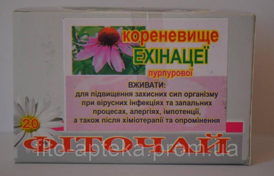 Эхинацея пурпурная (корневище) № 20