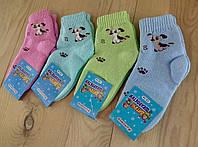 Носки  детские махровые Успех Житомир Украина размер 12-14  NDZ-0707234