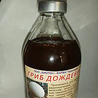 """Настойка """"Дождевик""""- при заболеваниях крови и лимфы, выводит токсины из организма"""