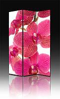 Ширма Промарт Україна Розовая орхидея 120х180 см, фото 1