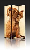 Ширма Промарт Україна Рыжий щенок 120х180 см, фото 1