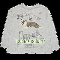 Детский реглан (футболка с длинным рукавом) р.116-122 для мальчика ткань 100% хлопок 1103 Серый 122