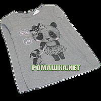 Детский реглан (футболка с длинным рукавом) р.116-122 для девочки ткань 100% хлопок 1102 Серый 122