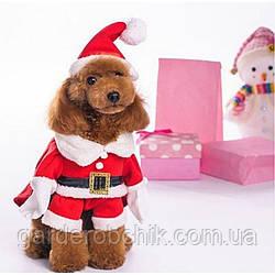 "Костюм новогодний, толстовка ""Санта"" для собаки, кошки. Одежда для животных"
