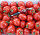 Семена томата Шкипер F1 1000 семян Lark Seeds, фото 4