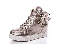 Женские модные ботинки - сникерсы оптом 1255-5 (8пар, 36-41)