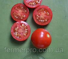 Семена томата Старскрим F1 \ Starskrim F1 500 семян Lark Seeds