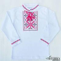 Детская вышиванка в категории этническая одежда детская в Украине ... ad5c43ac6950c