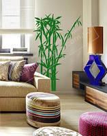 "Интерьерная наклейка на стену ""Комнатный бамбук"""