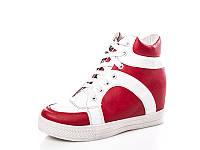 Женские модные ботинки - сникерсы оптом 2936 Red-white (8пар, 36-41)