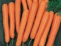 Морковь Ванда, 500 г