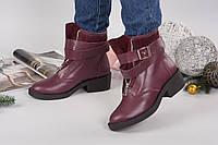Зимние кожаные женские ботинки Ботичелли бордовые, фото 1