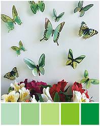 3D Метелики об'ємні зелені
