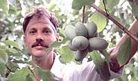 Нил Петерсон - создатель лучших сортов азимины
