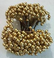 Калина золотая лакированная, соцветие из 50 ягод, диаметр ягоды 8 мм