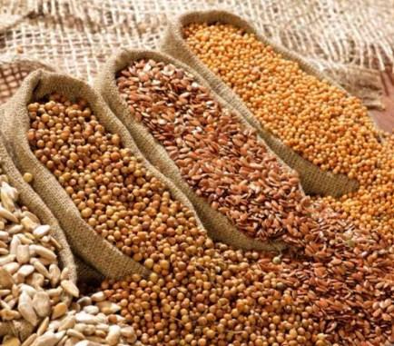 Перед посевом семена часто обрабатывают протравителями. Чтобы защитить от вредителей и болезней.