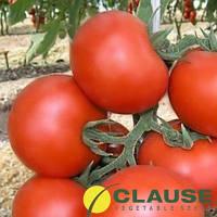 Семена томата Кристал F1 (Clause) 1 г — ранний (65-75 дней), красный, круглый, индетерминантный.