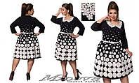 Платье женское юбка клеш трикотаж в крупный горох белый воротничок кружево Размеры:50,52,54,56