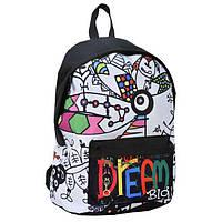 Рюкзак школьный с рисунком DREAM BIG Paso
