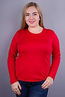 Сафина. Женские гольфы больших размеров. Красный.