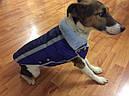 Жилет-попона мех 67 см разм №6 синий для собак, фото 3