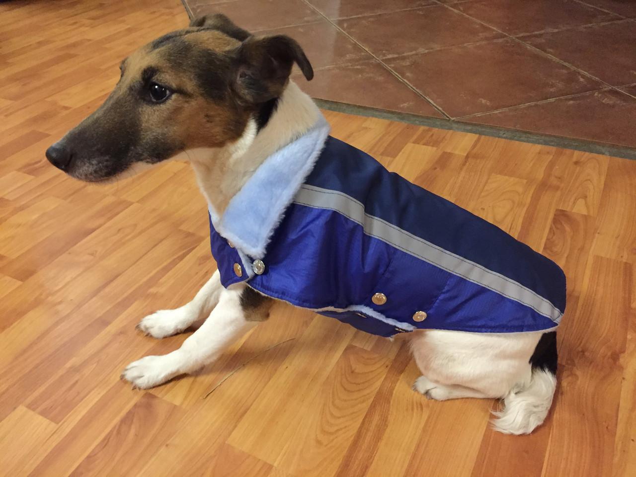 Жилет-попона мех 67 см разм №6 синий для собак