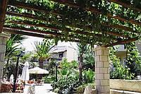 Перголы для винограда DAXWOOD