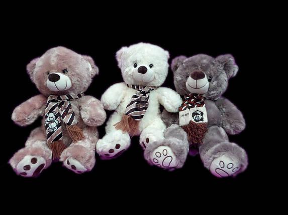 Мягкая игрушка Мишка 28 см плюшевый Медведь в шарфе детские игрушки на подарок, фото 2