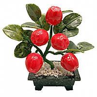 Яблоня (5 плодов)(20х13х8 см) Код:19149
