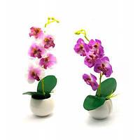 Орхидея в горшке (28х7х7 см) Код:27215