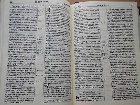 Біблія, 16,5х24,5 см, сіра з синім тисненням, фото 2