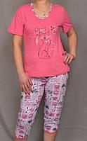 """Пижама женская домашняяфутболка с бриджами (капри) """"Мур Мур""""хлопковая, розовая"""