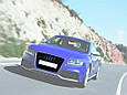 Решетка радиатора в стиле RS5 для Audi A5, фото 5