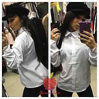 Рубашка женская норма ЯС545, фото 1