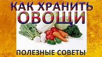 Лучшие способы хранения овощей зимой