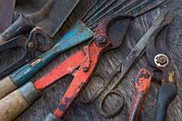 Как уберечь садовые инструменты от ржавчины