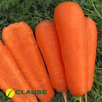 Семена моркови Боливар F1 (Clause) 100000 семян - среднепоздний гибрид (110-115 дней), тип Шантане