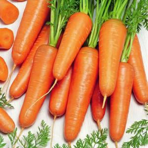Семена моркови Канада F1 (Бейо / Bejo / САДЫБА ЦЕНТР) 400 семян -среднепоздняя (135 дней), тип Шантане/Данверс, фото 2
