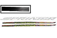Лыжи спортивные, пластик STС р. 200 см. (Украина)