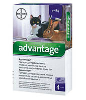 Капли на холку от блох для котов Bayer Advantage более 4 кг (Байер Адвантейдж 1 пипетка)