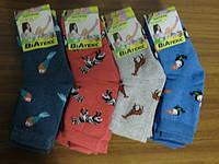 Носочки детские махровые из хлопка с красивыми рисунками птиц и животных 16 рр (3 - 4 года)