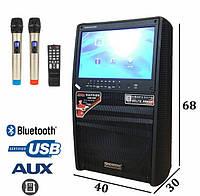 Аккумуляторная колонка с экраном и радиомикрофонами, с усилителем Комбик Temeisheng A15-30