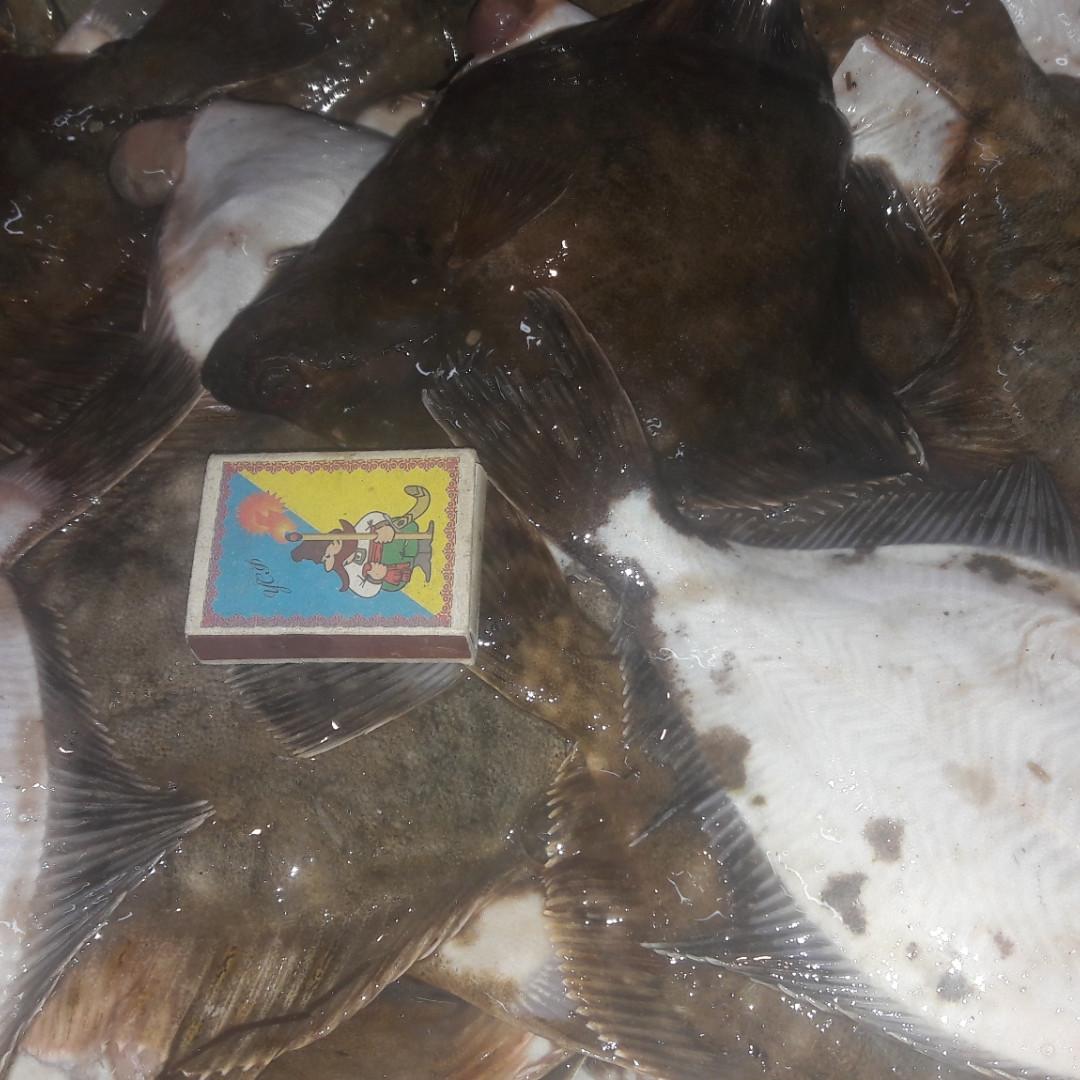 Камбала-глосса с/м, (глоська) черноморская, 6-7шт\кг