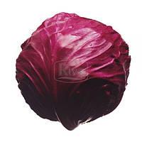 Капуста краснокочанная Топаз 0,5г