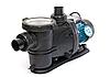 Насос для бассейна Leo с фильтром 0.6кВт Hmax10м Qmax300л/мин, фото 2