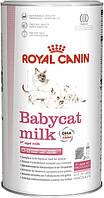 Сухое молоко Royal Canin Babycat Milc 300г