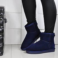 Женские Тёмно Синие короткие УГГИ Fashion р.37 идёт на 36, фото 1