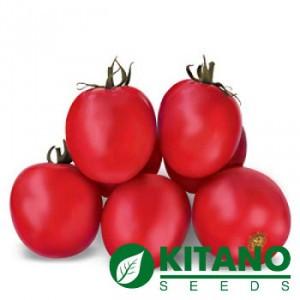 Семена томата Асвон F1 10000 сем (10 тыс сем), Kitano Seeds — детерминантный, ранний.