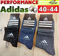"""Носки мужские демисезонные """"Adidas"""" performance Турция 40-44р. ассорти  НМД-05661"""