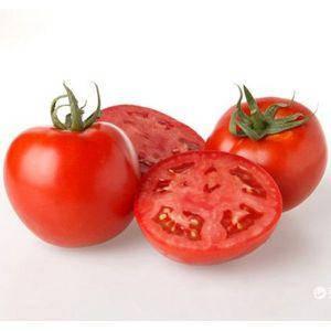Семена томата Скиф F1 (Nunhems/ АГРОПАК+) 100 сем — ультра-ранний (90-103 дн), красный, детерминантный, фото 2